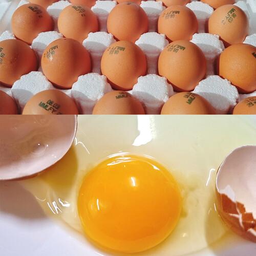 합천애향교회 애향공동체 무항생제 유정란(20개 x 2박스)