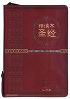 중국어 톰슨 주석성경 중단본 (간체자/색인/지퍼/이태리신소재/적색)