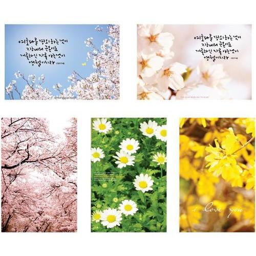 헤븐 봄 엽서 (86종)