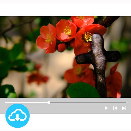 십자가 배경영상 7 by 빛나는시온 / 이메일발송(파일)