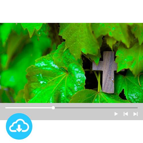 십자가 배경영상 16 by 굿픽 / 이메일발송(파일)