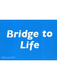 생명의 다리 (영문판) - Bridge to Life