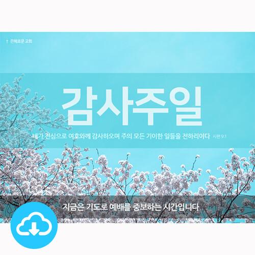 파워포인트 예배화면 템플릿 2 (감사주일) by 굿픽 / 이메일발송 (파일)
