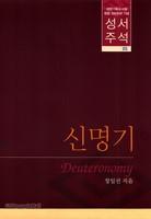 대한기독교서회 창립 100주년 기념 성서주석 5 (신명기)