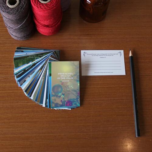 포토 말씀카드 50세트-(개역개정+NIV)-피터카페