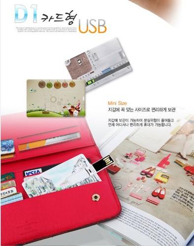D1 카드형 USB