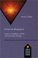 God in Himself: Scripture, Metaphysics, and the Task of Christian Theology (소프트커버)