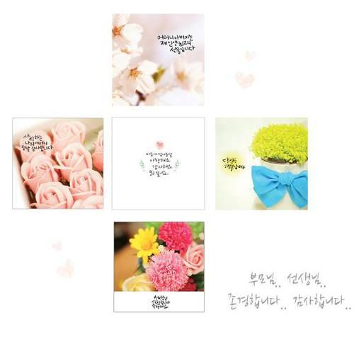 [Heaven] 어버이날 & 스승의 날 엽서_헤븐엽서 (26종 낱장 & 세트 판매)