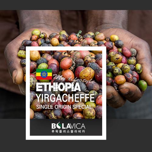 커피볼라비카 싱글오리진 에티오피아 예가체프 (230g, 500g)