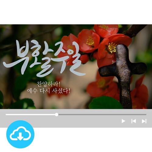 예배용 영상클립 7 by 빛나는 시온 / 부활주일 / 이메일 발송(파일)